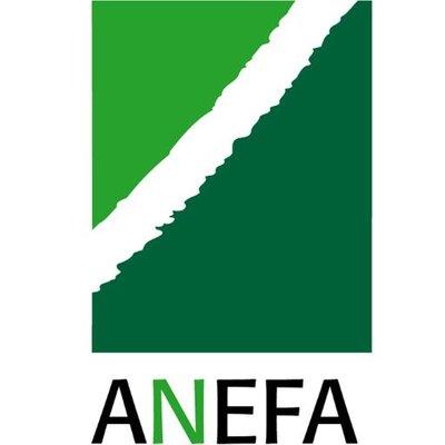 ANEFA 22